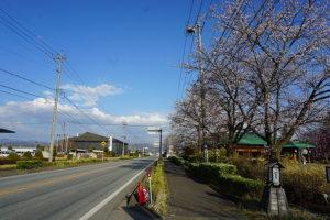 大通り沿いで道路付もよく、店舗としても目を引く立地です。(周辺)