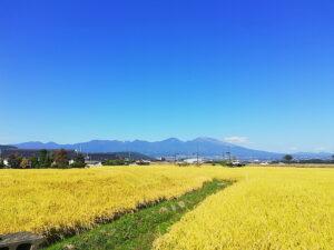 晴れの日は浅間山が望めます。(周辺)
