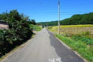 日本の良き田園風景が残っております。 (周辺)